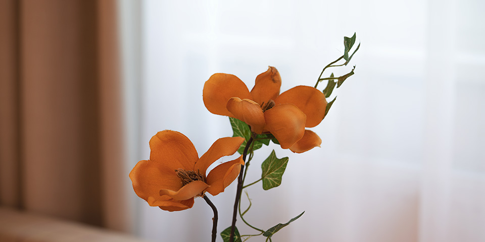 Blume im Hotelzimmer
